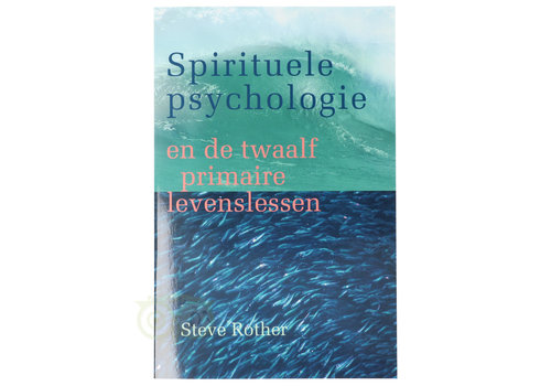 Spirituele psychologie - Steve Rother