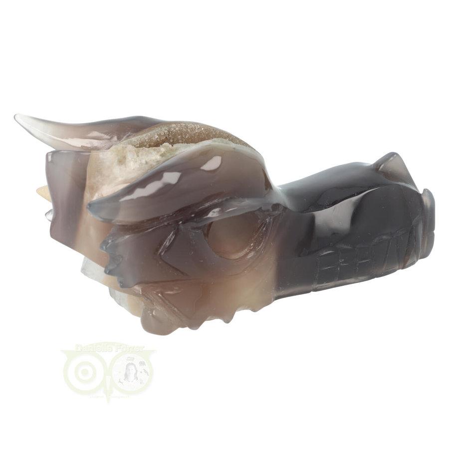 Agaat Chalcedoon Geode Drakenschedel 618 gram-10