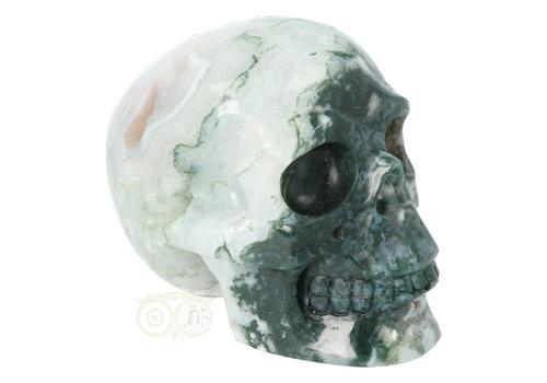 Mosagaat schedel 674 gram