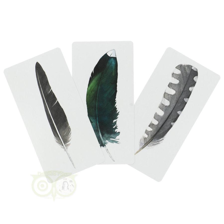 Divine Feather Messenger - Alison Denicola-3