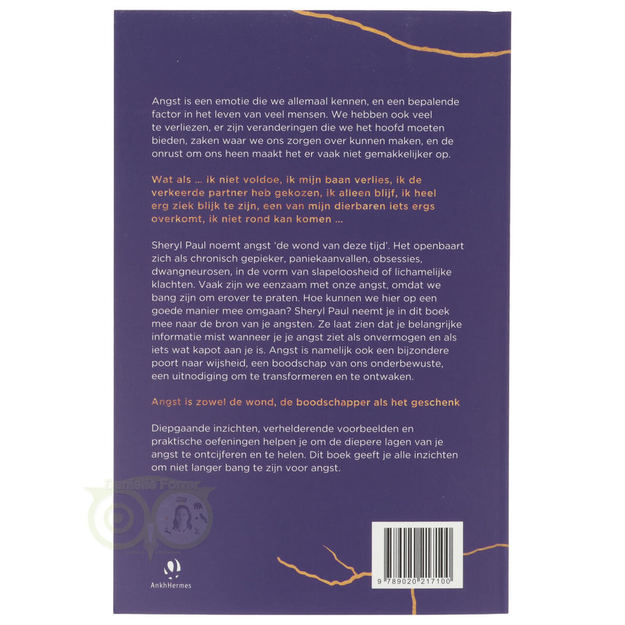 De verborgen wijsheid van spanning, stress, zorgen en onzekerheid - Sheryl Paul-2