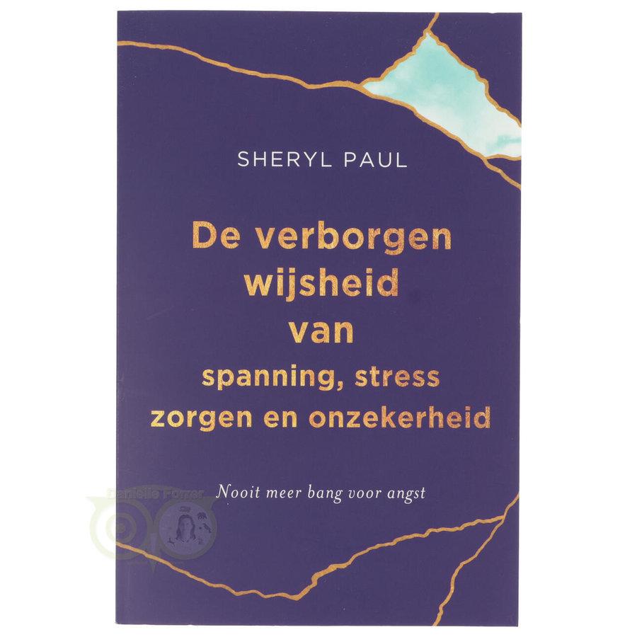 De verborgen wijsheid van spanning, stress, zorgen en onzekerheid - Sheryl Paul-1