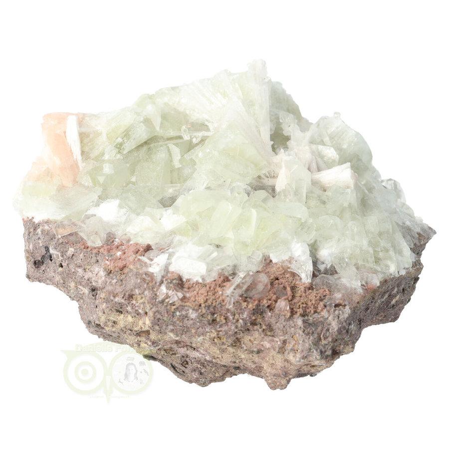 Apofyliet met scolesiet cluster Nr 22 - 472 gram-9