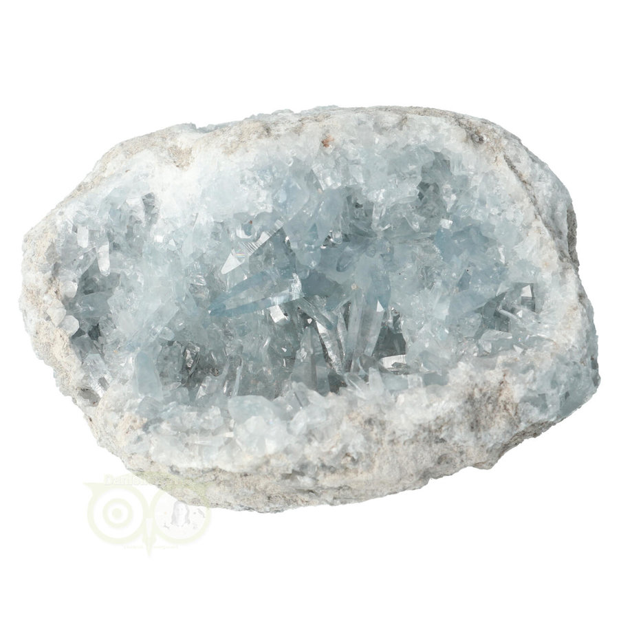 Celestien Cluster Nr 50 - 952 gram - Madagaskar-4