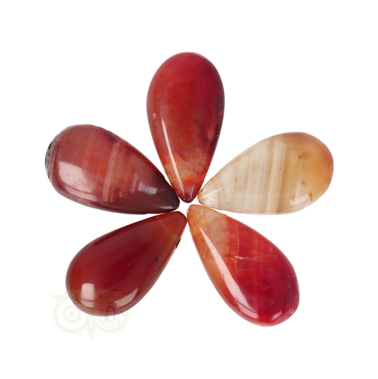 Carneool edelsteen hangers | Druppel hanger Carneool | Edelstenen Webwinkel - Webshop Danielle Forrer