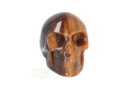 Tijgeroog schedel  Nr 1