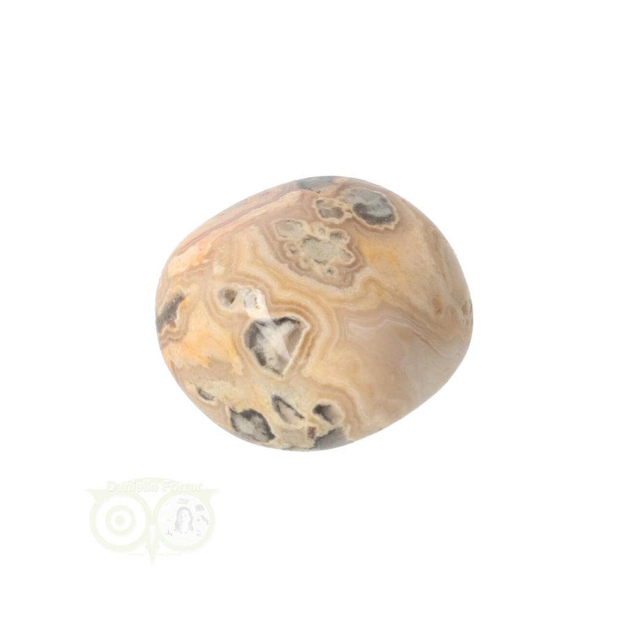 Crazy Lace Agaat trommelsteen Nr 8 -  17 gram-5