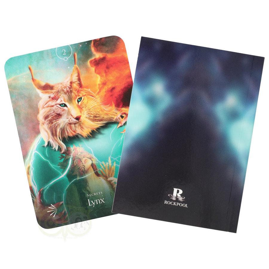 Divine Animals Oracle - Stacey Demarco-9