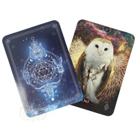 thumb-Divine Animals Oracle - Stacey Demarco-5