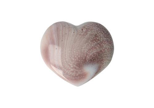 Eye of St. Lucia Hart  ± 3 cm Nr 22