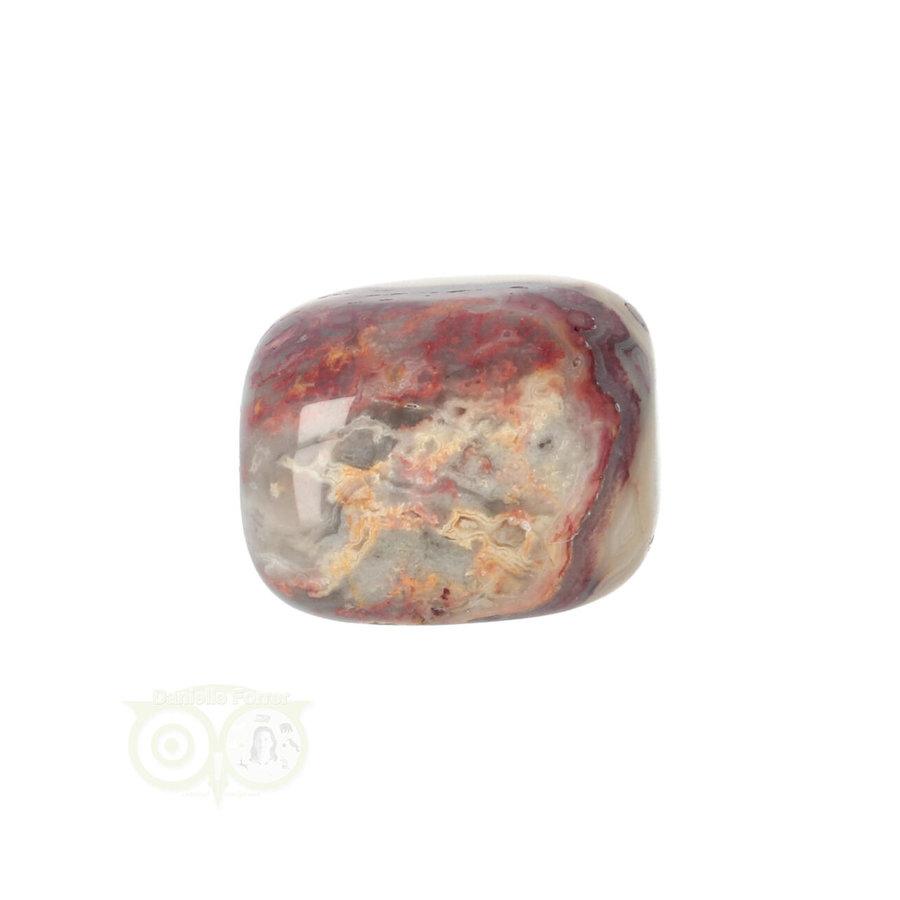 Crazy Lace Agaat trommelsteen Nr 14 -  20 gram-6