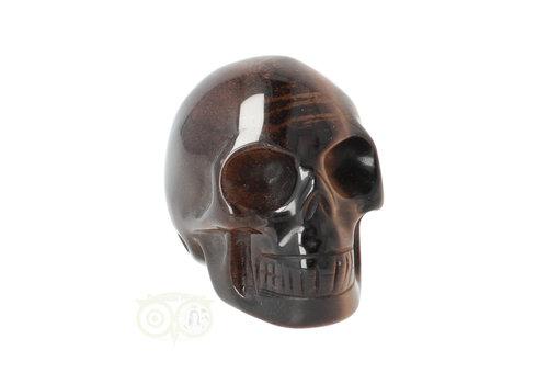 Tijgeroog schedel  Nr 4