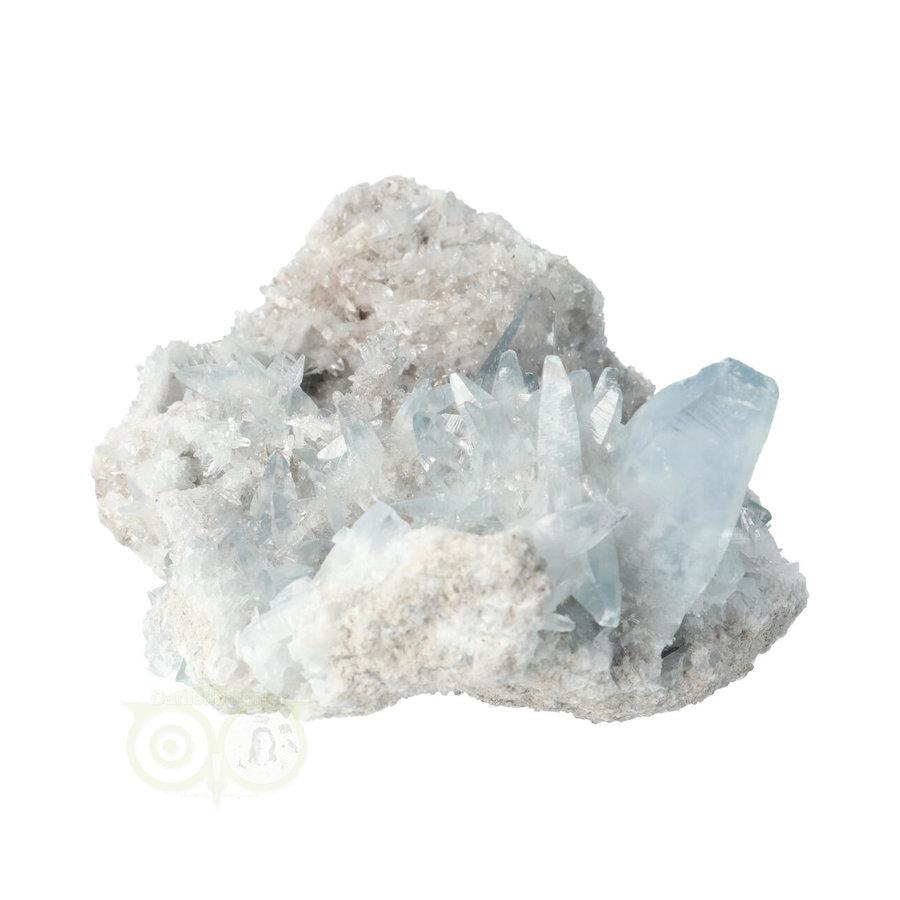 Celestien Cluster Nr 64 - 770 gram - Madagaskar-4