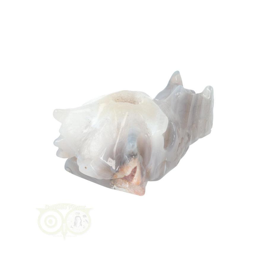 Agaat Drakenschedel 139 gram-7