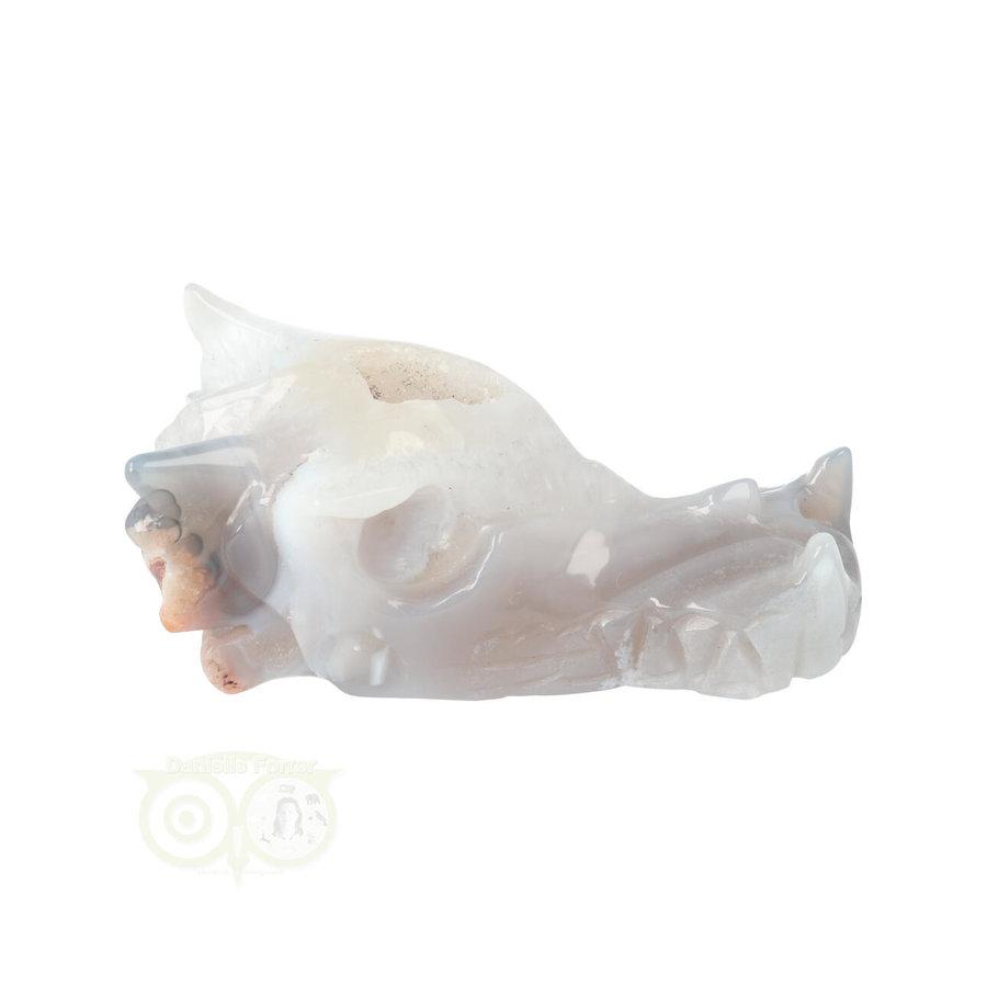 Agaat Drakenschedel 139 gram-9