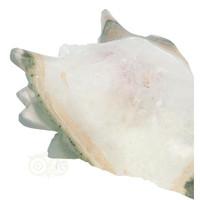 thumb-Agaat Geode Drakenschedel 256 gram-2