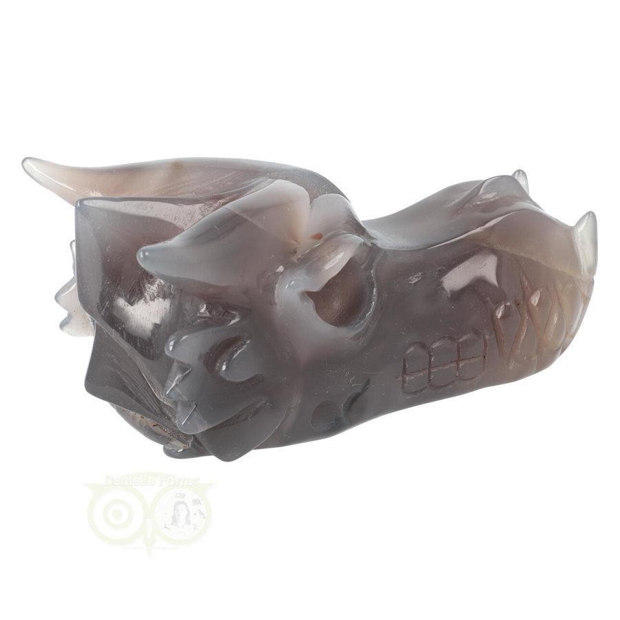 Agaat Geode Drakenschedel 594 gram-7