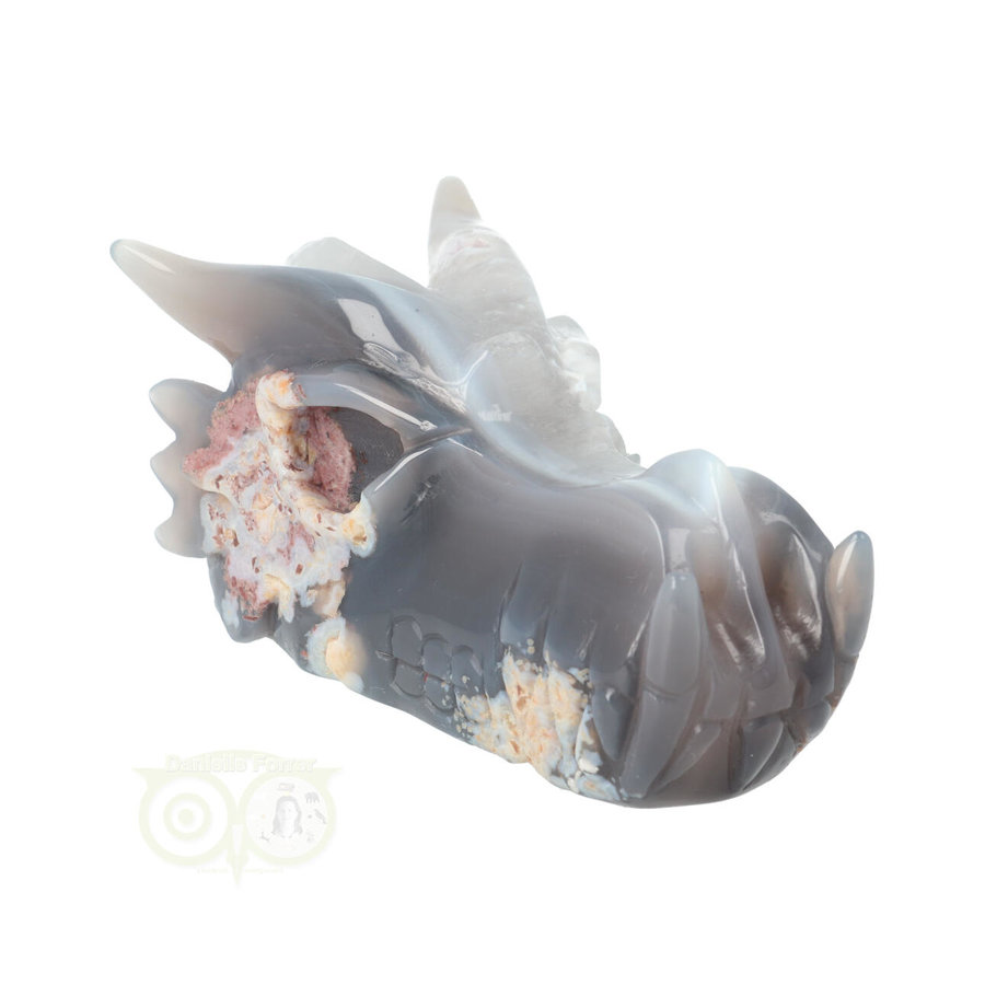 Agaat Drakenschedel 520 gram-3