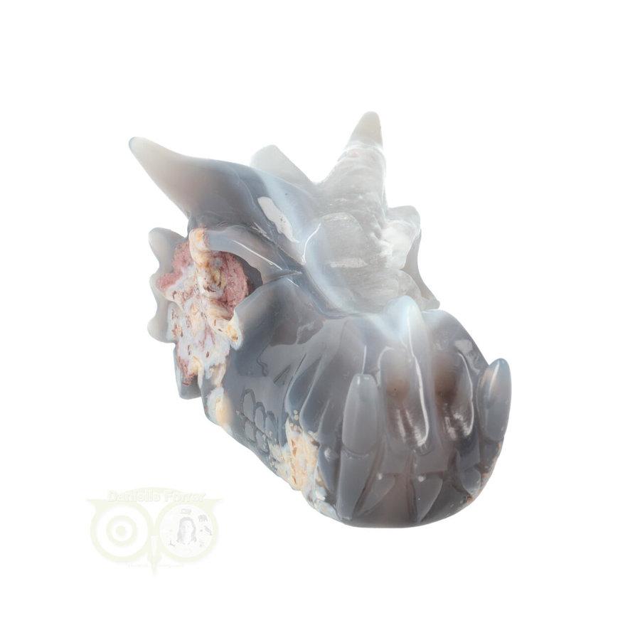 Agaat Drakenschedel 520 gram-4