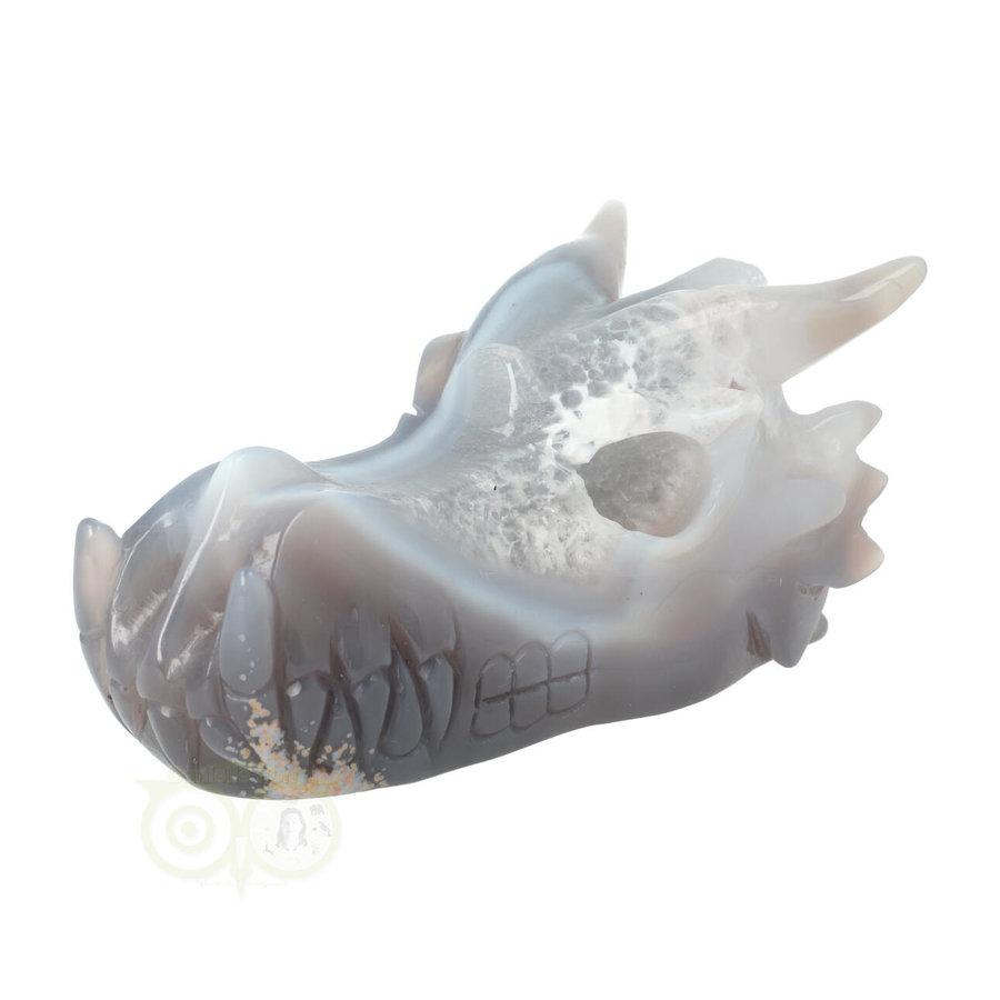 Agaat Drakenschedel 520 gram-6
