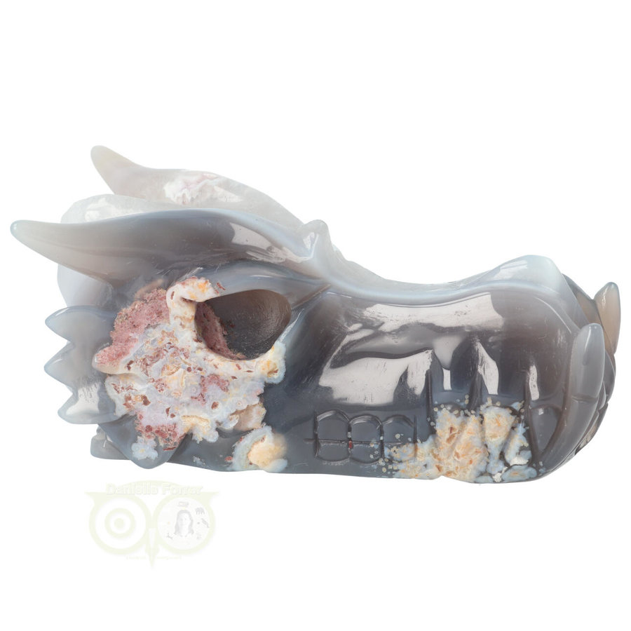 Agaat Drakenschedel 520 gram-9