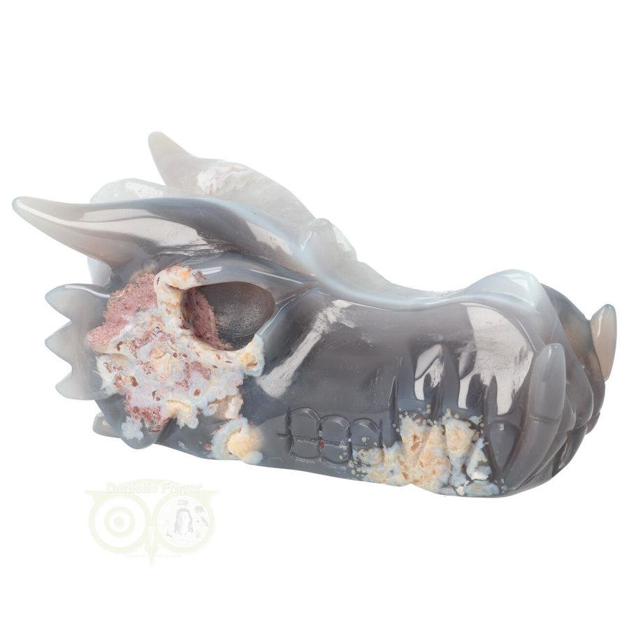 Agaat Drakenschedel 520 gram-10