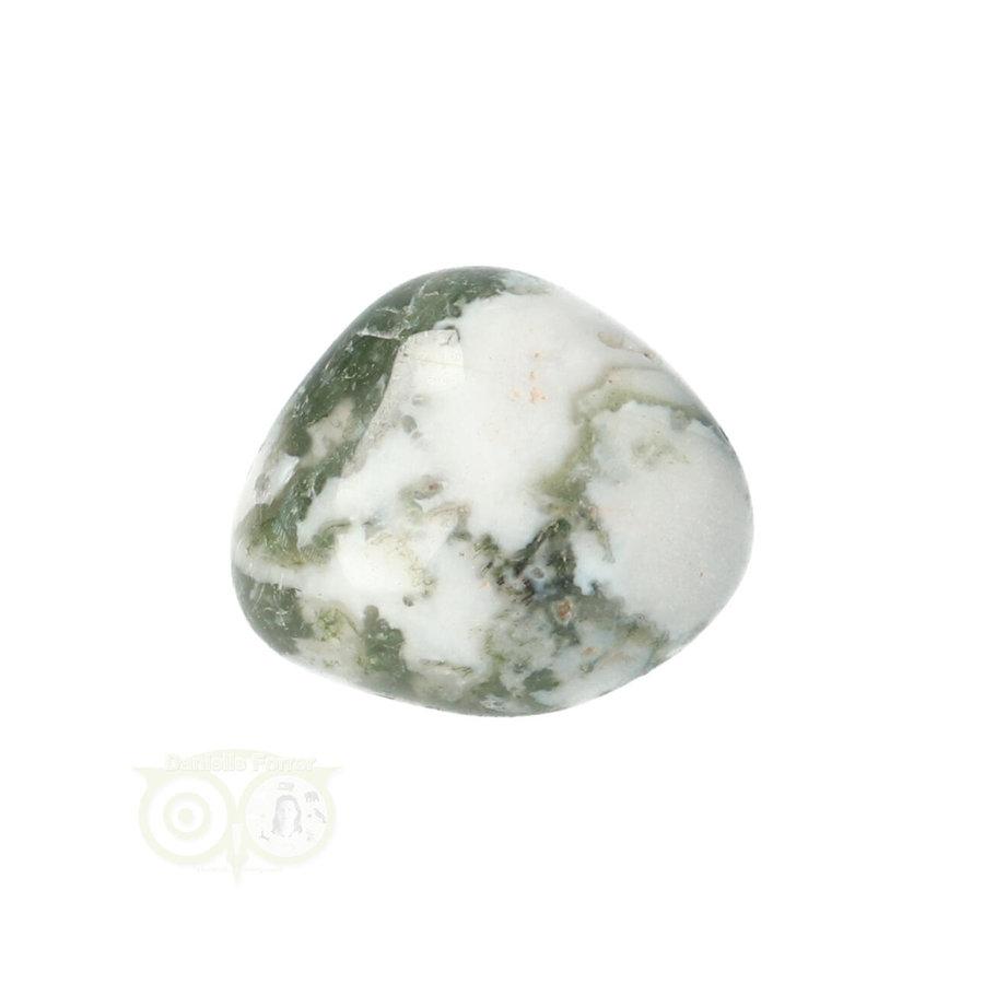 Boom Agaat knuffelsteen Nr 10 - 12 gram-1