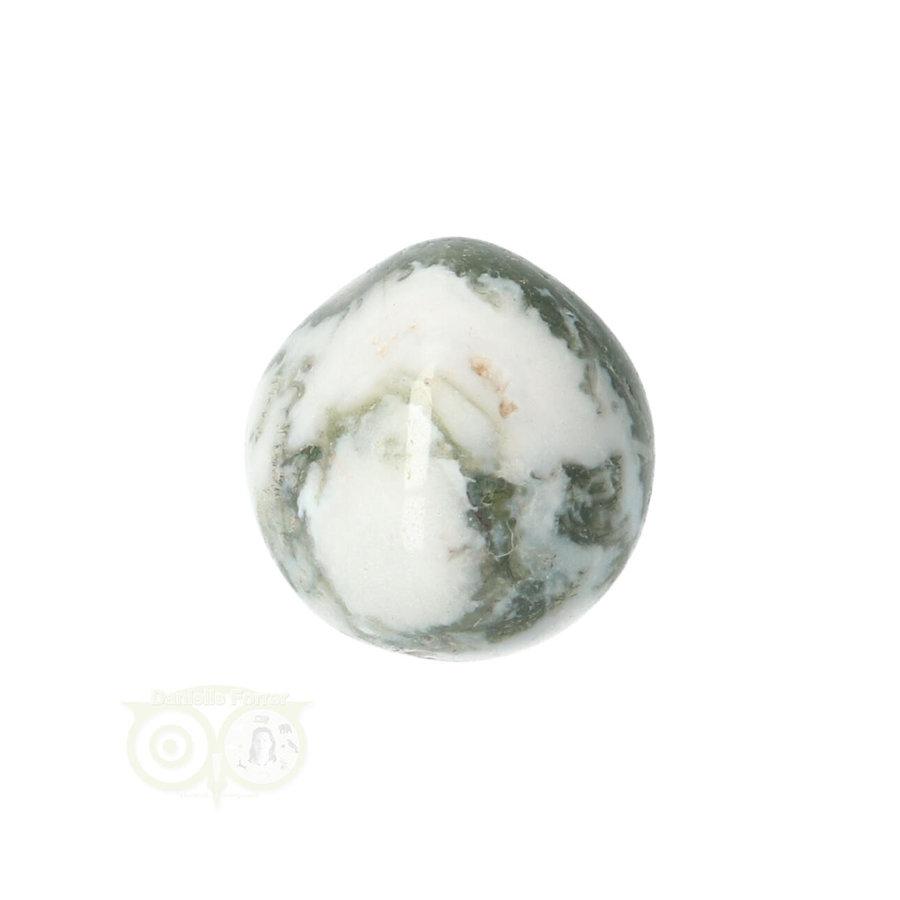 Boom Agaat knuffelsteen Nr 10 - 12 gram-2