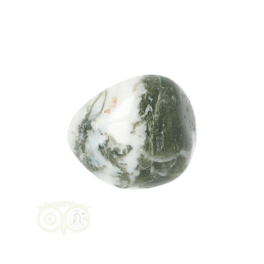 Boom Agaat knuffelsteen Nr 10 - 12 gram-3