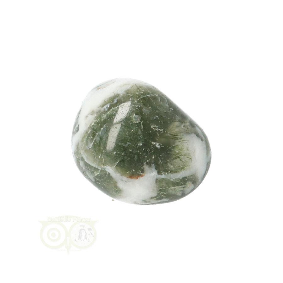 Boom Agaat knuffelsteen Nr 10 - 12 gram-4