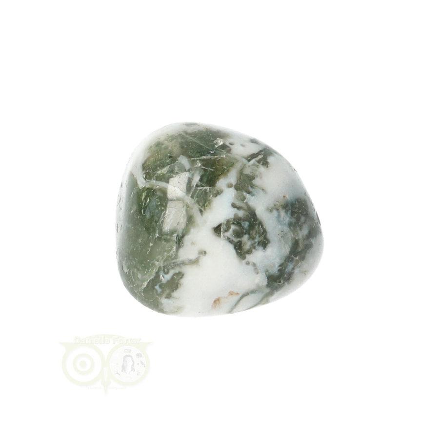 Boom Agaat knuffelsteen Nr 10 - 12 gram-6