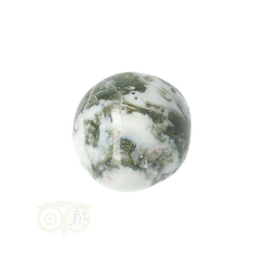 Boom Agaat knuffelsteen Nr 10 - 12 gram-7