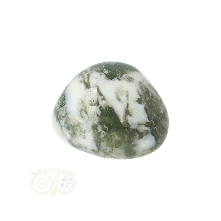 Boom Agaat knuffelsteen Nr 10 - 12 gram-8