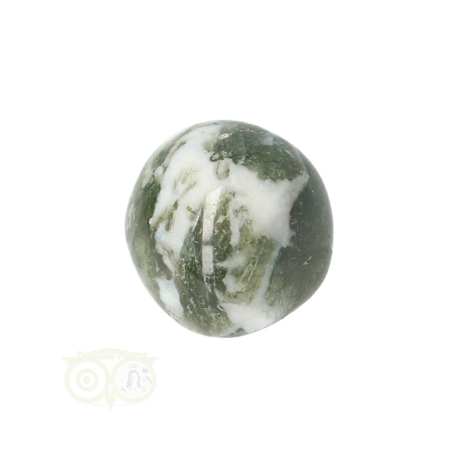 Boom Agaat knuffelsteen Nr 10 - 12 gram-9