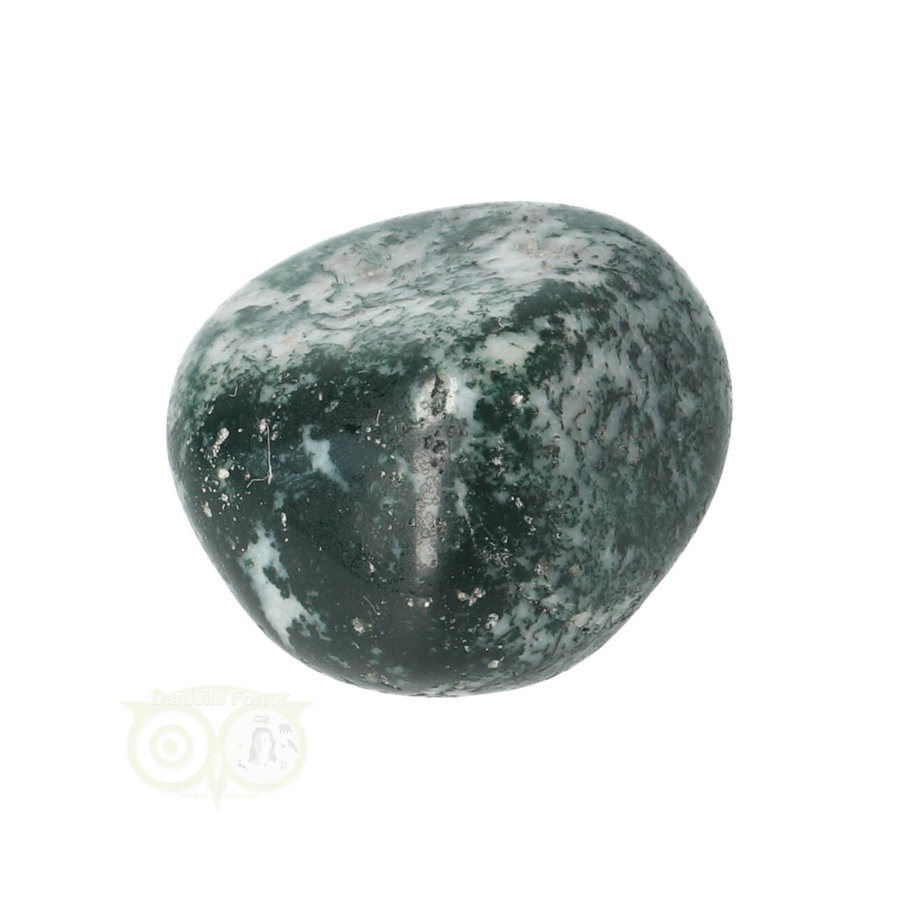 Boom Agaat knuffelsteen Nr 12 - 18 gram-3