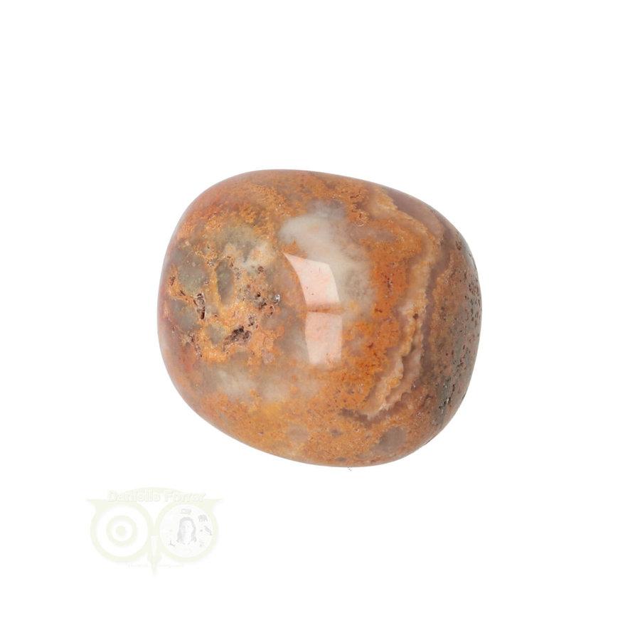 Crazy Lace Agaat trommelsteen Nr 22 -20 gram-1
