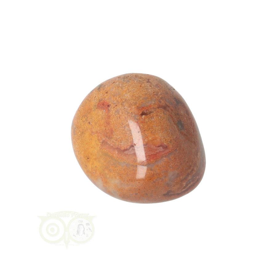 Crazy Lace Agaat trommelsteen Nr 22 -20 gram-9