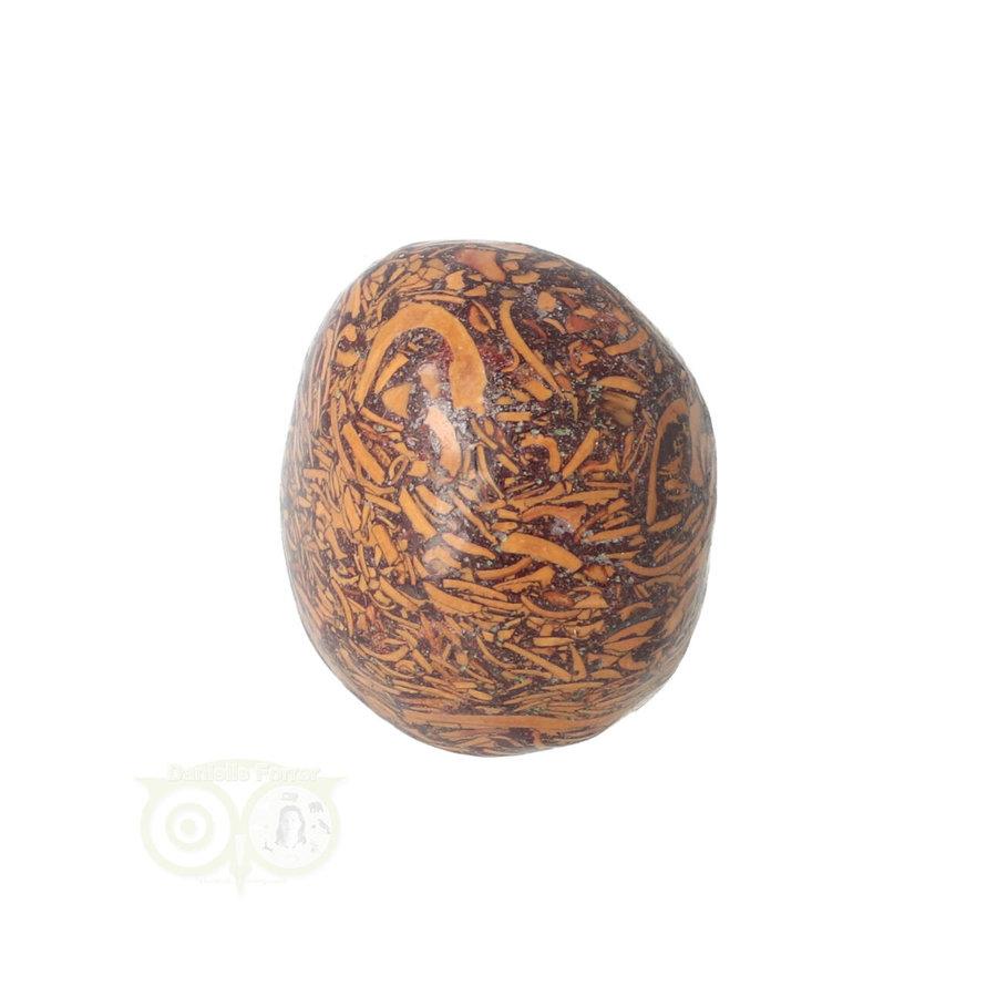 Coquina Jaspis trommelsteen Nr 9 - 22 gram-2