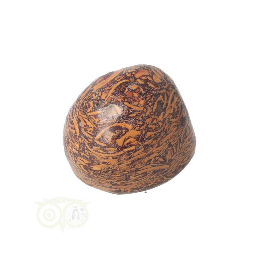 Coquina Jaspis trommelsteen Nr 9 - 22 gram-3
