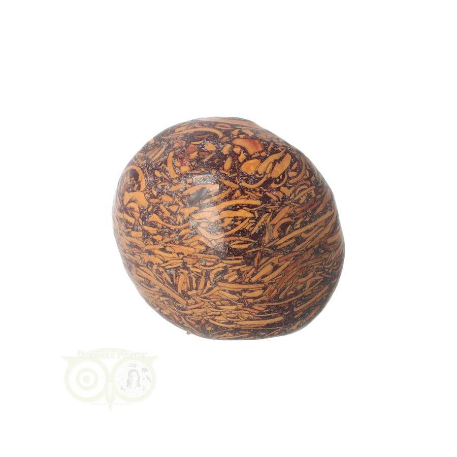 Coquina Jaspis trommelsteen Nr 9 - 22 gram-4