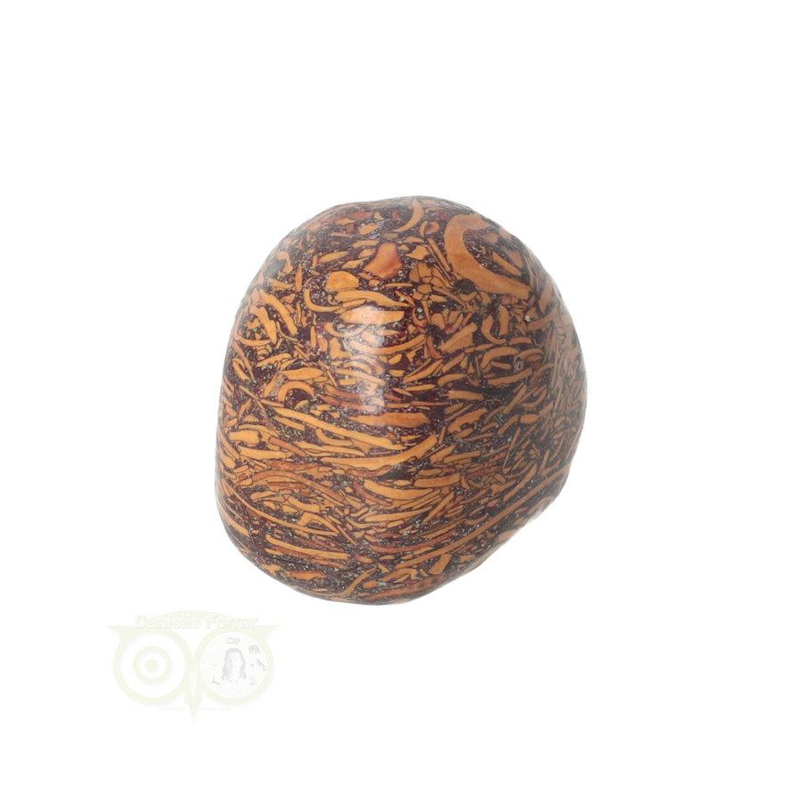 Coquina Jaspis trommelsteen Nr 9 - 22 gram-5