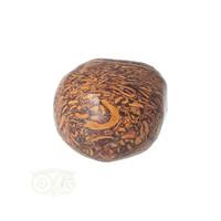 thumb-Coquina Jaspis trommelsteen Nr 9 - 22 gram-6