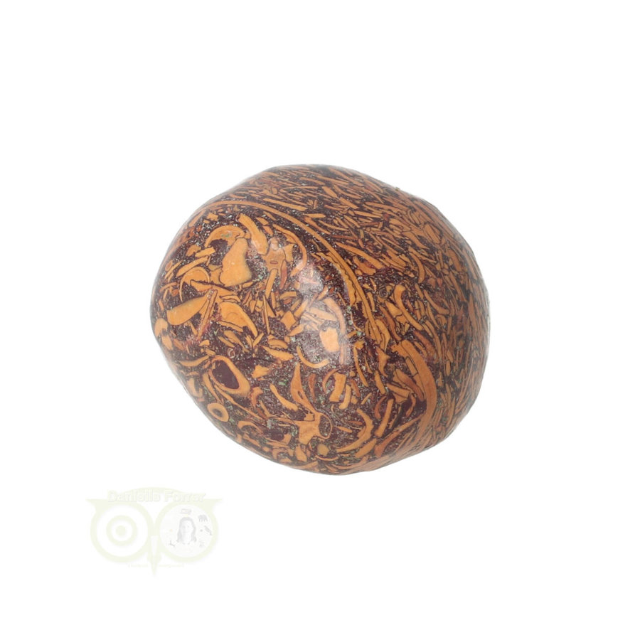 Coquina Jaspis trommelsteen Nr 9 - 22 gram-9