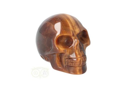 Tijgeroog schedel  Nr 9