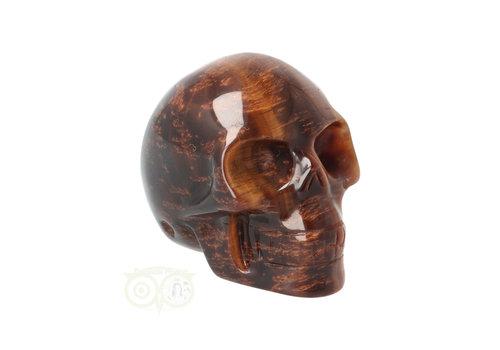Tijgeroog schedel  Nr 10