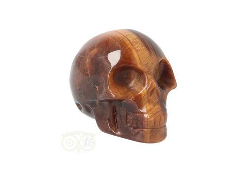 Tijgeroog schedel  Nr 11