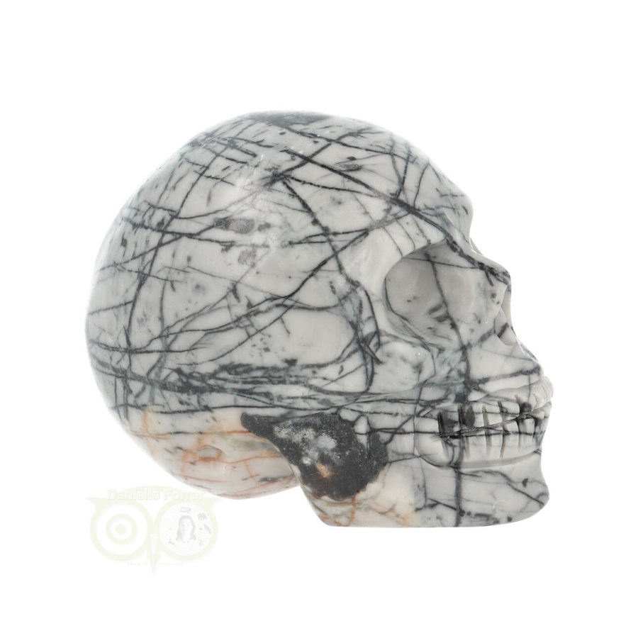 Picasso Jaspis schedel Nr 10 - 103 gram-9
