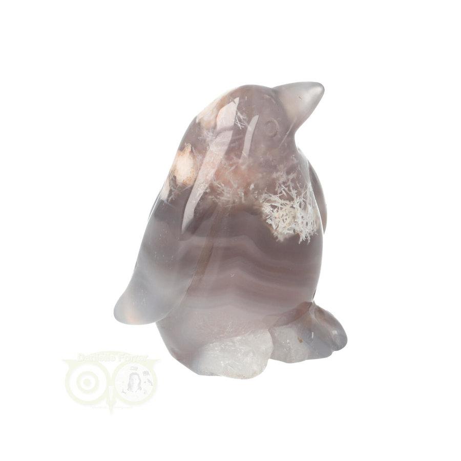 Bloem Agaat Pinguin Nr 7 - 87 gram-9
