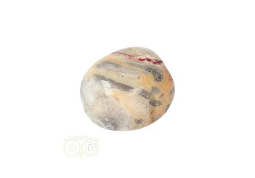 Crazy Lace Agaat trommelsteen Nr 25