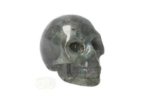 Labradoriet schedel Nr 7
